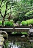 Naturpark und -strom mit Brücke des gehenden Pfades Stockfotos