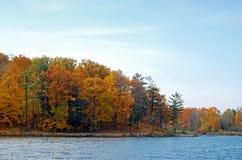 Naturpfad neben einem See Stockbild
