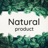 Naturprodukttext mit grünem Blatthintergrund stockfoto