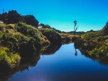 Naturreflexion Fotografering för Bildbyråer