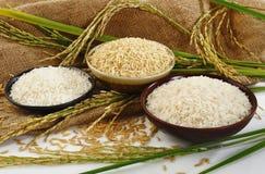 Naturreis, weißer Reis und japanischer Reis auf Sack backg Lizenzfreies Stockfoto