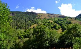 Naturreservat teberda Karachayevo-Cherkessia Lizenzfreies Stockfoto
