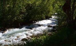 Naturreservat teberda Karachayevo-Cherkessia Lizenzfreies Stockbild