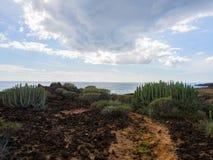 Naturreservat von Malpais de Rasca Stockfoto