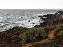 Naturreservat von Malpais de Rasca Stockfotografie