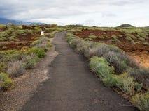 Naturreservat von Malpais de Rasca Stockbilder