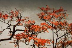 Naturs målning på väggen Royaltyfri Foto