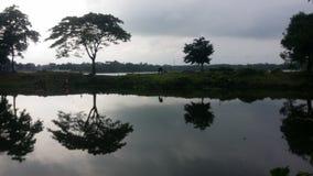 Naturs reflexion Arkivfoton