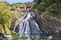 Naturschutzgebiet Bhagwan Mahavir, GOA, Indien lizenzfreies stockfoto