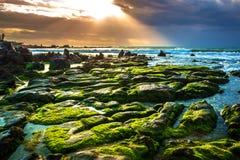 NaturSeascape med gröna Moss Covered Rocks, vågor och solstrålar i morgonsolskenet royaltyfria foton