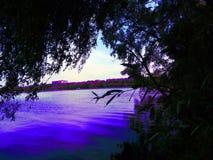 Natursommerfluß und -Baumreihe auf dem Ufer sehen direkt an Lizenzfreies Stockfoto