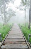 Naturspur mit dem Nebel Lizenzfreies Stockfoto