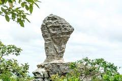 Natursteinskulpturen Stockbild