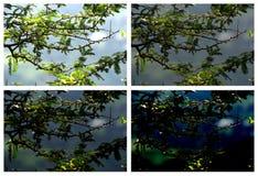 Naturstimmungen Stockbilder