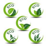 Natursymbole mit Blatt - eco Ikonen Lizenzfreie Stockfotos
