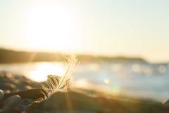 Naturszene bei Sonnenuntergang Lizenzfreie Stockbilder