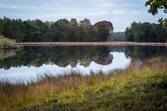 Naturszene, Hilversum die Niederlande stockfotos