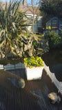 Naturteich-Fischwasser-Funktionstöpfe der Gartenparadiesblumen-Bäume bringen natürliche Decking unter Stockfotografie
