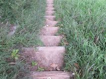 Naturtreppe Stockfoto