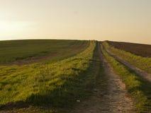 Naturväg Arkivbilder