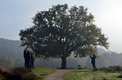 Naturvänner frågade en tillfällig passerby att göra ett fotografi royaltyfria bilder