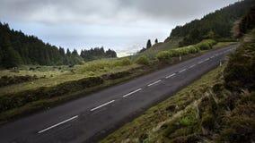 Naturweg der Straße großes gerade - Azoren-Sao Miguel Portugal stockfotos