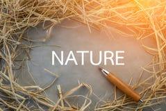 Naturwort mit Heu für Rahmen auf grauem Hintergrund jpg Stockfotografie