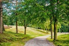 Natury, środowiska i ekologii pojęcie, Footpath wśród zielonych drzew, ekologia Ścieżka w wiosny lub lata lesie, natura zdjęcia royalty free