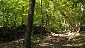Natury Conservancy ślad (6 9) zdjęcie wideo