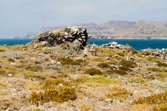 Natury i przyrody sanktuarium Chile Zdjęcie Royalty Free