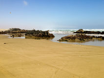 Natury i przyrody sanktuarium Chile zdjęcia stock