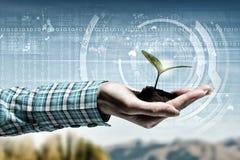 Natury i technologii interakcja zdjęcia royalty free