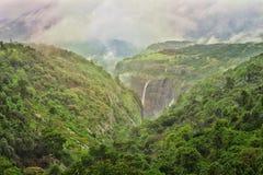 Natury i wody spadek w lesie obraz royalty free
