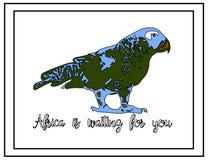 Natury ilustracja Pocztówka Zwierzęta od dżungli Papuga w zoo Afryka czeka ciebie Obrazy Stock