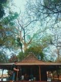 Natury Indonesia westjava Ziemska turystyka Obraz Stock