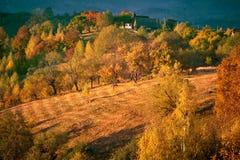 Natury jesieni transformacja obraz stock