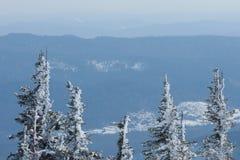 Natury krajobrazowa zima Zdjęcie Stock
