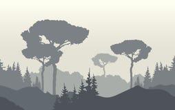 Natury krajobrazowy tło z mgłowym wschodem słońca, górami i drzewami, ilustracji