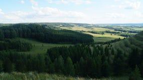 Natury lasowa trawa chmurnieje halną świeżość Fotografia Royalty Free