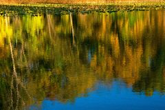 Natury paleta obrazy stock