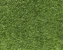 Natury pojęcie - świeża zielonej trawy tekstura dla tła zdjęcie royalty free