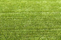 Natury pojęcie - świeża zielonej trawy tekstura dla tła obrazy royalty free