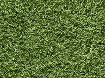 Natury pojęcie - zielonej trawy tekstura jako tło obraz stock