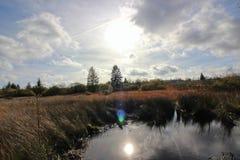 Natury słońca wody jezioro zdjęcie royalty free