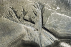 Natury ` s piaska akwaforta Obraz Royalty Free