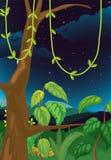 natury scena ilustracji