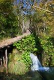 natury sceneria Zdjęcie Royalty Free
