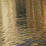 Natury tło złoty sinuous wyplata Fotografia Stock
