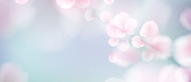 Natury tło z okwitnięcie gałąź różowi kwiaty royalty ilustracja