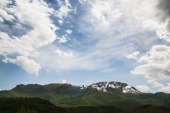 Natury wiosna 1 Obraz Stock